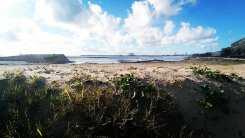 Praia de Matosinhos