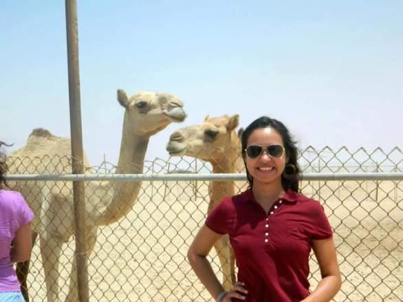 Camel Farm in Zegreet