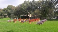 Suardi Parque