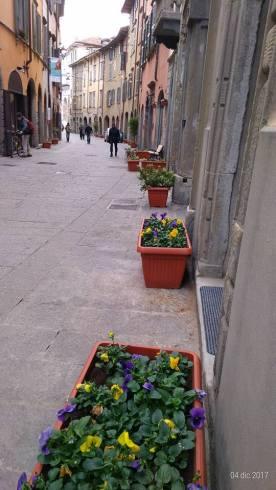 Bergamo centro - cidade baixa